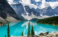 加拿大留学选择专业