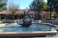 留学美国斯坦福大学