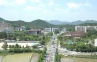 留学不怕晚,韩国东国大学顺利申请!
