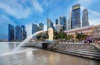 新加坡留学资金担保