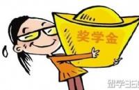 新加坡大学奖学金申请