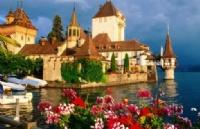 办理瑞士留学签证需要哪些材料