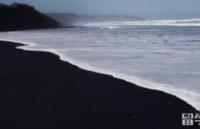 新西兰留学:奥克兰的缤纷色彩你感受到了吗?