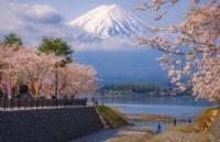 留学日本通过语言学校过渡的必要性