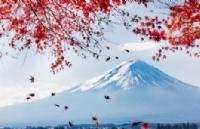 日本留学出勤率新规