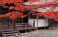 为什么要本科阶段赴日本留学
