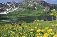 瑞士蒙特勒酒店工商管理大学学制特点
