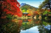 韩国留学政府奖学金申请资格是什么