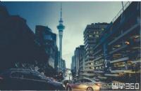 新西兰留学 | 新西兰语言要求低的专业有哪些
