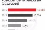 为什么中国留学生对马来西亚的兴趣逐渐上升?