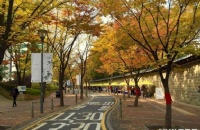 韩国留学兼职途径有哪些及兼职政策介绍