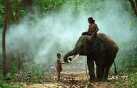 泰国留学有前途吗?毕业后的就业前景如何?