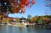 本科生或研究生如何留学韩国  韩国留学需要哪些材料