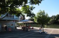 怀卡托大学培育总统的新西兰名校