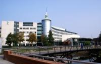 荷兰萨克逊大学成功申请,新的学习生活已经启程!
