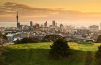 新西兰八大都分布在哪些城市?