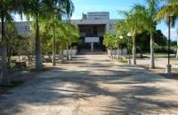 古巴哈瓦那农业大学具备颇具凝聚力的学术氛围