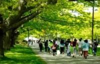 加拿大综合类大学水不水?刷新你知识的时候到了!