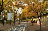 韩国签证领区分布:你应该在哪个领事馆递交签证呢?