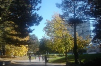 全球最国际化大学Top150:加拿大篇