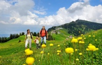 瑞士纳沙泰尔酒店管理大学入学要求