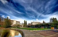 怀卡托大学大学预科申请