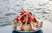 在挪威留学不能错过的美食来啦!