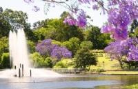 均分不足也能拿下澳洲八大的昆士兰大学