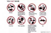 澳洲入境容易被查的20个违禁品,移民局列出来了!华人必读~