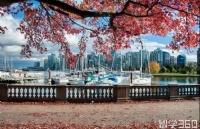 去加拿大留学,生活费大概需要多少钱?