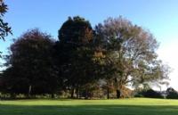来奥克兰实现景观园林建筑师的梦想,Unitec-北岛唯一高校!