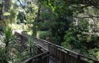 进入园林建筑设计行业的快捷课程   Unitec园艺设计证书