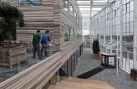荷兰留学生活常识分享
