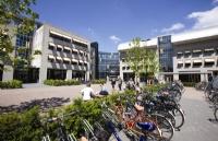 荷兰留学:购买自行车的方式有哪些?