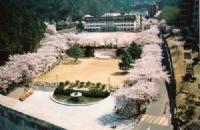 韩国旅游行程规划简述