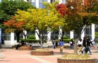 韩国留学:关于语言能力考试的建议