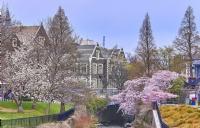 奥塔哥大学到底什么专业好?