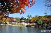 韩国留学奖学金有哪些?