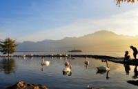 分享丨瑞士留学公立大学费用需要多少