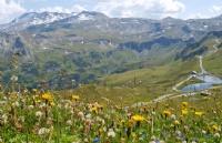 2018全球最适合养老国家出炉,瑞士简直是天堂