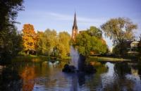 瑞典人呼吁大家在大自然中漫步,能有效降低人的压力值