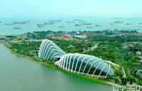新加坡金融专业哪个大学好