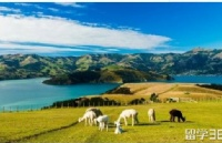 知道这些新西兰留学安全小知识很有必要