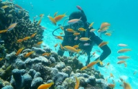 留学访谈:斯巴顿在泰留学生去马尔代夫的经历分享