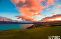 """新西兰丨发现年度色的""""新""""活力"""