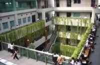 泰国农业大学一年费用多少