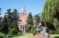 马德里康普顿斯大学2019排名