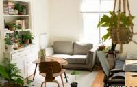 租房新手福利收藏贴 | 拒绝套路,在新西兰找到家的感觉