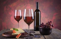 法国留学:葡萄酒相关专业