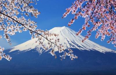日本语言学校申请时间规划讲座,你不二的选择!